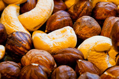 Nuts as background royalty free stock images