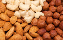 Nuts. Background. Royalty Free Stock Photo