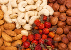 Nuts. Background. Royalty Free Stock Photos