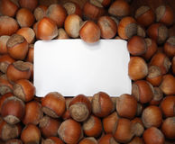 Nuts background. With white copy box Royalty Free Stock Photo