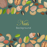 Nuts Background Concept Vector in Flat Design. Royalty Free Stock Image