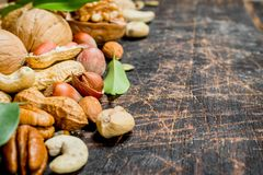 Nuts background. Different kind of nuts with green leaves stock photography