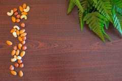 Nuts background. Background with few almonds, cashews and hazelnuts Royalty Free Stock Image