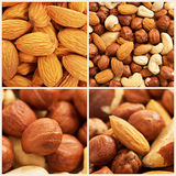 Nuts background set Stock Images