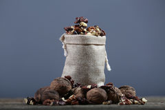 Nuts in a bag Stock Photography