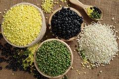 Nuts and barley on sack. Stock Image