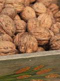Nuts in a basket Stock Photography