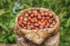 Nuts basket. Royalty Free Stock Image
