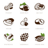 Nuts, Beans and Seed Vector Stock Photography