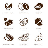 Nuts, Beans and Seed Vector Royalty Free Stock Photography