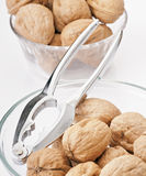 Nuts in bowl Royalty Free Stock Photos