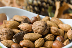 Nuts in a bowl Royalty Free Stock Photos