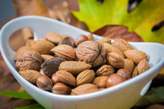 Nuts in a bowl. Mixed nuts in a bowl with blurred autumnal leaves in the background royalty free stock photos