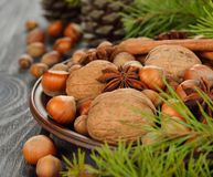 Nuts in a brown plate Stock Photography