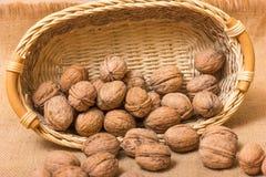 Nuts on burlap background Stock Image