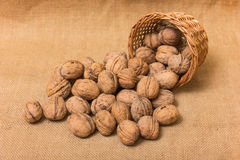 Nuts on burlap background Royalty Free Stock Photos