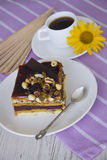 Nuts cake. Chocolate cake with almonds and walnuts royalty free stock images