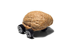Nuts car - Drive me nuts. Royalty Free Stock Photos