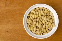 Nuts of cedar cones Stock Images