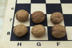 Nuts on a chessboard Royalty Free Stock Photos
