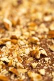 Nuts on Chocolate Toffee. Close-up photo of home made toffee, linited DOF Royalty Free Stock Photo