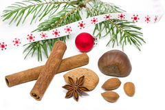 Nuts and cinnamon sticks. With fir twig on white background Royalty Free Stock Images