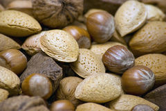 Nuts - Close up Stock Photo