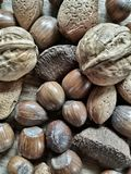 Nuts. Close  up view of various nuts Royalty Free Stock Images