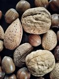 Nuts. Close view of a variety of nuts Stock Photography