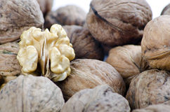 Nuts in closed frame. Nuts on white background, Natural Look on white Royalty Free Stock Image