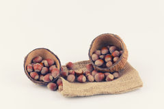 Nuts and coconut. Are located on a white background Royalty Free Stock Images
