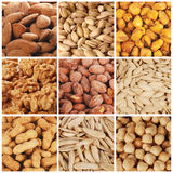Nuts collection. Nine varieties of nuts on a white field Stock Images