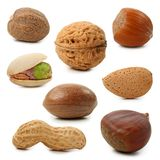 Nuts collection Royalty Free Stock Photo
