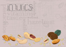 Nuts composition-background Royalty Free Stock Photos