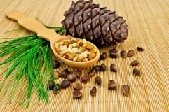 Nuts and cone of cedar on a bamboo mat Royalty Free Stock Image