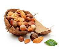 Nuts in cracked coconut Stock Image
