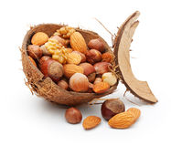 Nuts in cracked coconut Royalty Free Stock Image