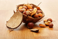 Nuts in cracked coconut Stock Images