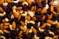 Nuts and cranberrie Stock Photography