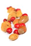 Nuts and cranberries Royalty Free Stock Photo