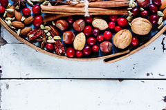 Nuts, cranberries and spices Royalty Free Stock Photo