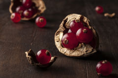Nuts and currants on wooden background stock photography