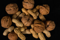 Nuts. Different types of nuts royalty free stock image