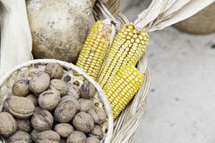 Nuts and dry corn. Nuts and dried corn, detail some nuts in a market, food diet Stock Images