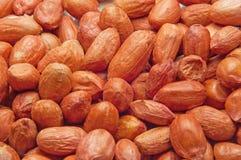 Nuts Erdnuss Lizenzfreie Stockbilder