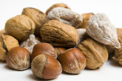 Nuts fall Royalty Free Stock Photo