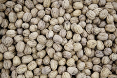 Nuts fall Royalty Free Stock Images