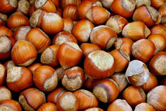 Nuts a filbert Stock Photo