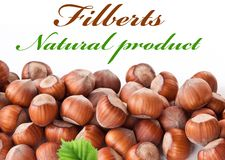 Nuts filberts isolated Stock Photo