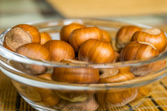 Nuts. Hazel (Corylus sp.) nuts, shells on a brown texture background stock image